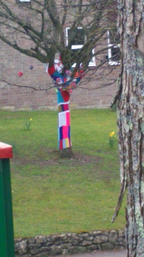 A tree with a scarf. I love it when random creativity escapes into the world like this.